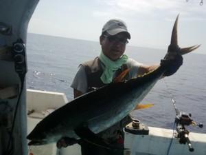 マグロ釣りパヤオ